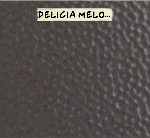 Melodic Electric Glockenspiel (Rear View) - Delicia